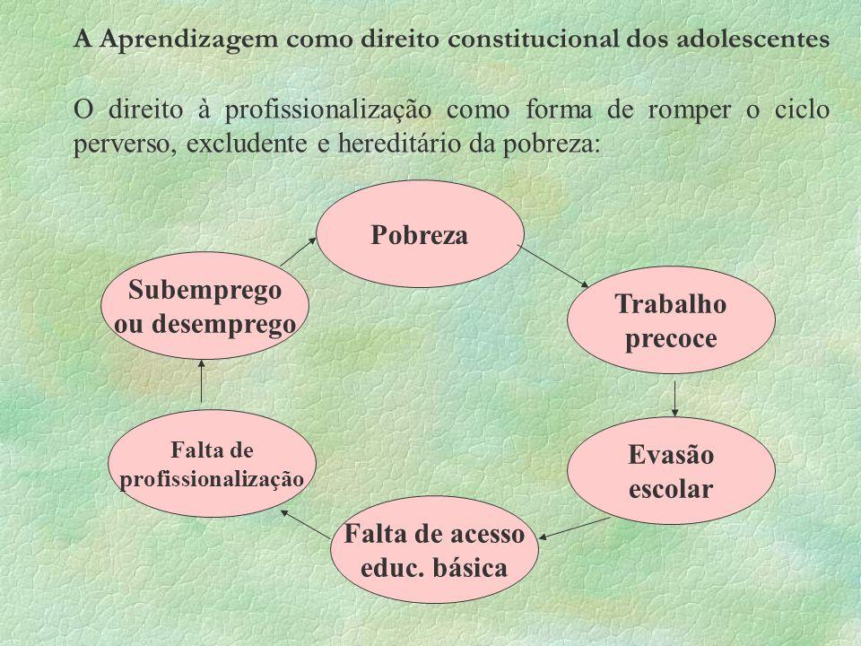 A Aprendizagem como direito constitucional dos adolescentes
