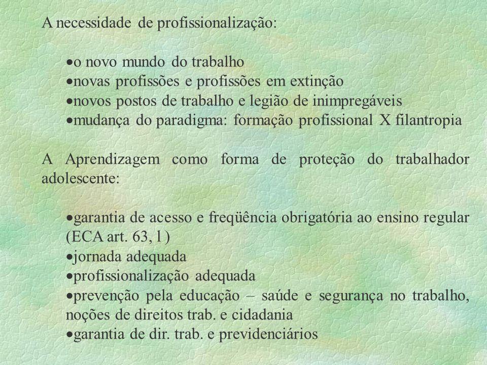 A necessidade de profissionalização: