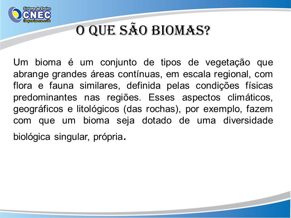 O que são biomas