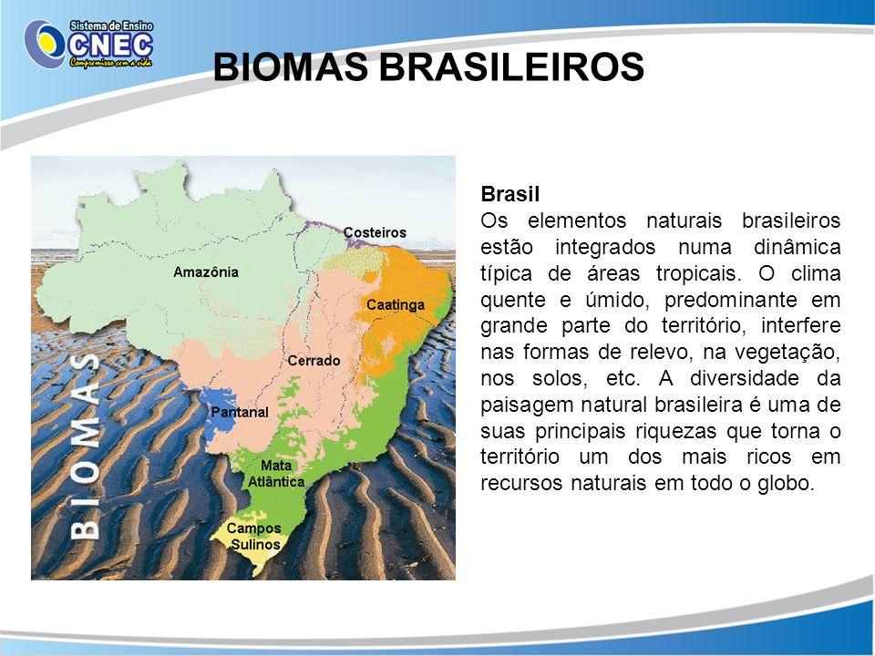 BIOMAS BRASILEIROS Brasil