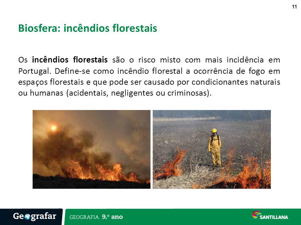 Biosfera: incêndios florestais