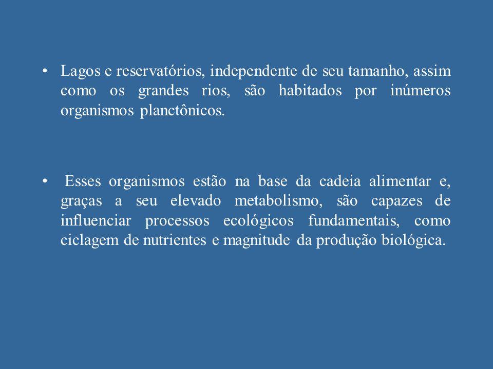 Lagos e reservatórios, independente de seu tamanho, assim como os grandes rios, são habitados por inúmeros organismos planctônicos.