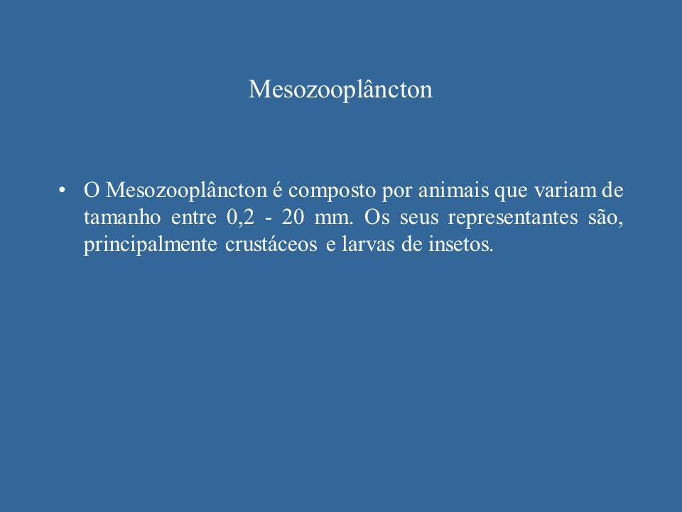 Mesozooplâncton
