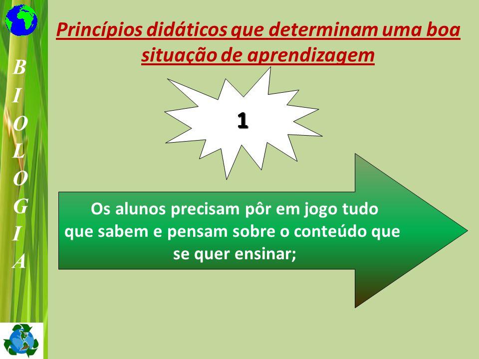 1 Princípios didáticos que determinam uma boa situação de aprendizagem