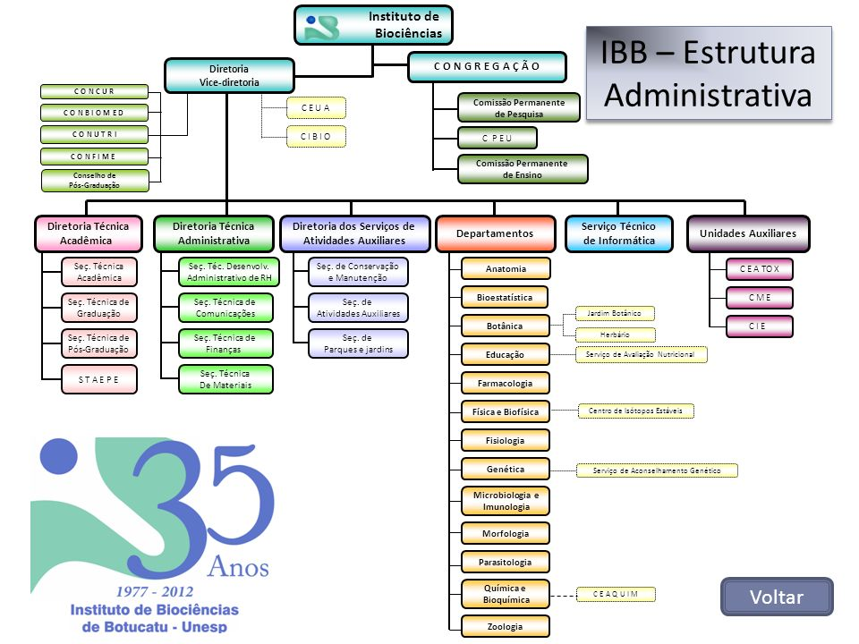IBB – Estrutura Administrativa