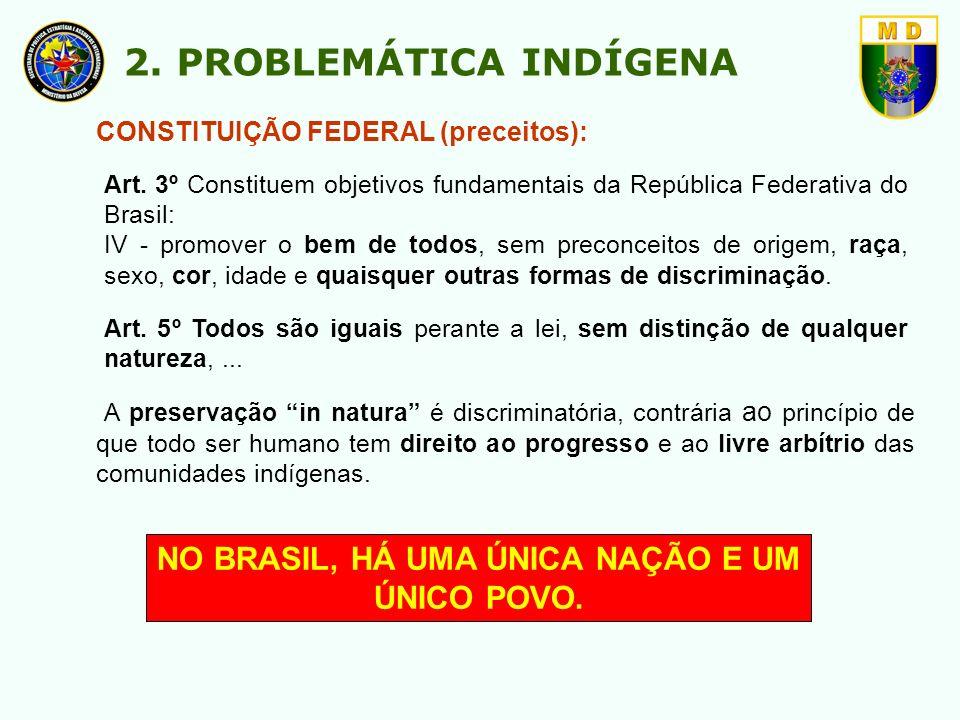 NO BRASIL, HÁ UMA ÚNICA NAÇÃO E UM ÚNICO POVO.