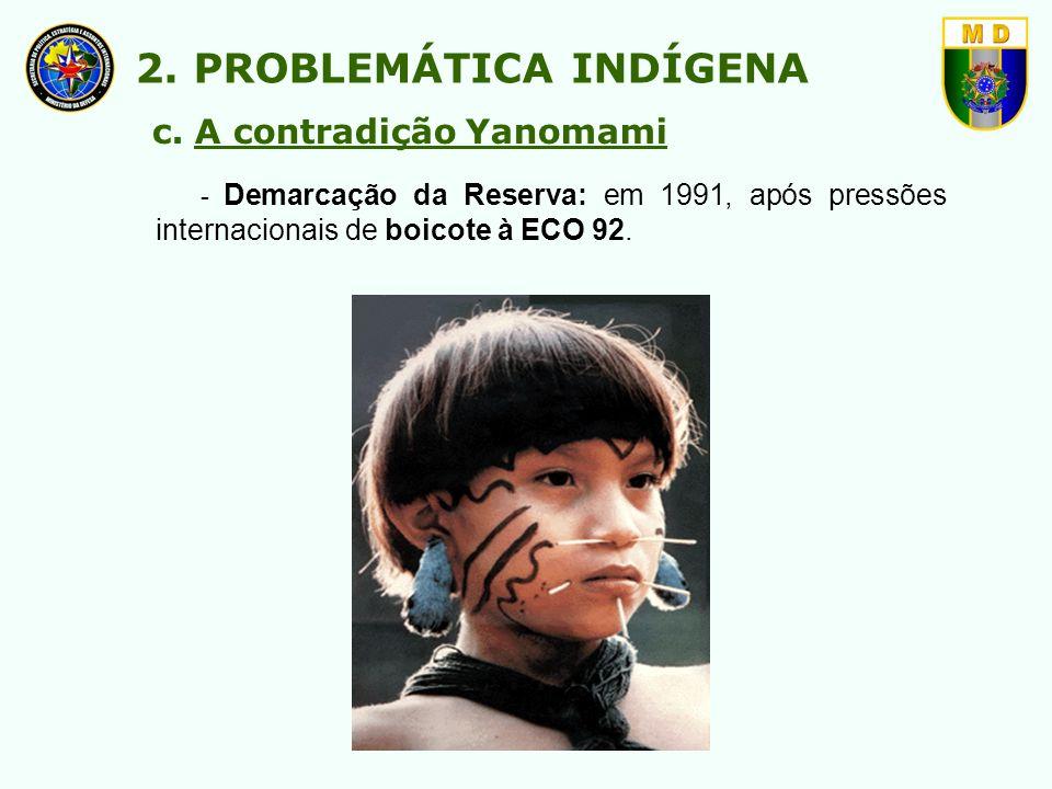 2. PROBLEMÁTICA INDÍGENA