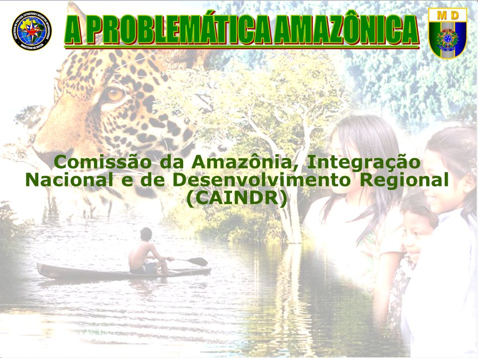 A PROBLEMÁTICA AMAZÔNICA
