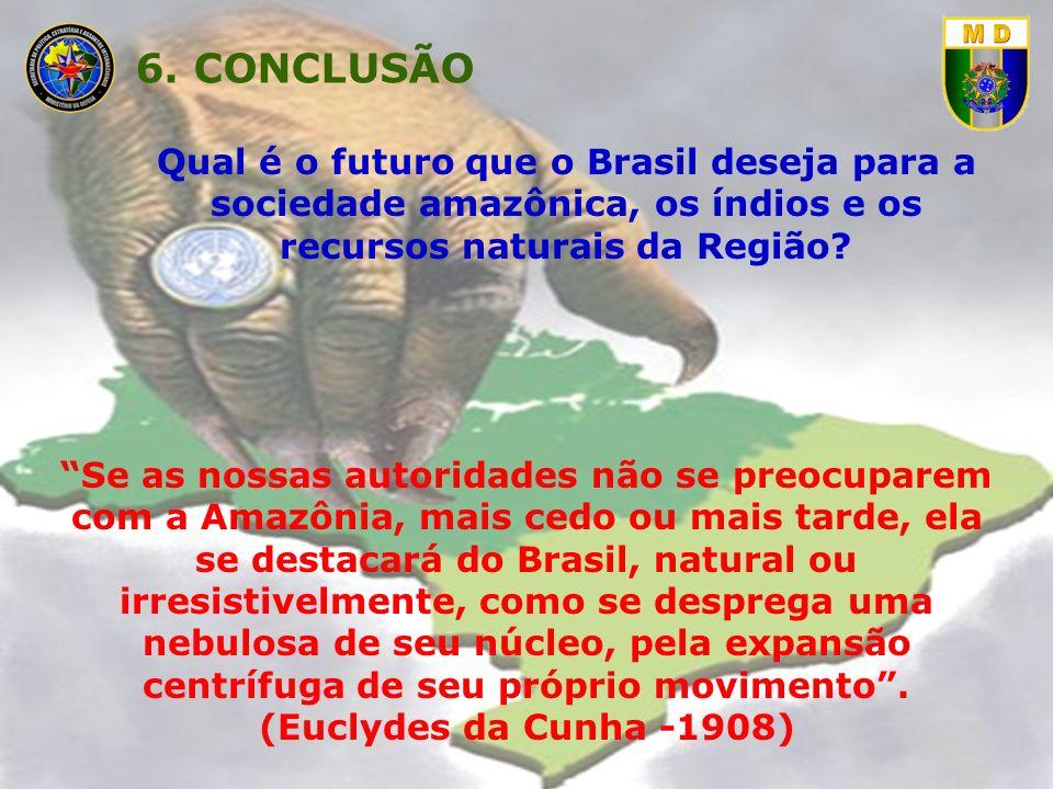 6. CONCLUSÃO Qual é o futuro que o Brasil deseja para a sociedade amazônica, os índios e os recursos naturais da Região