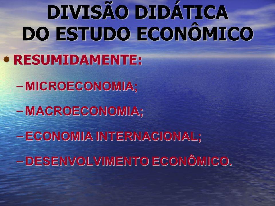 DIVISÃO DIDÁTICA DO ESTUDO ECONÔMICO