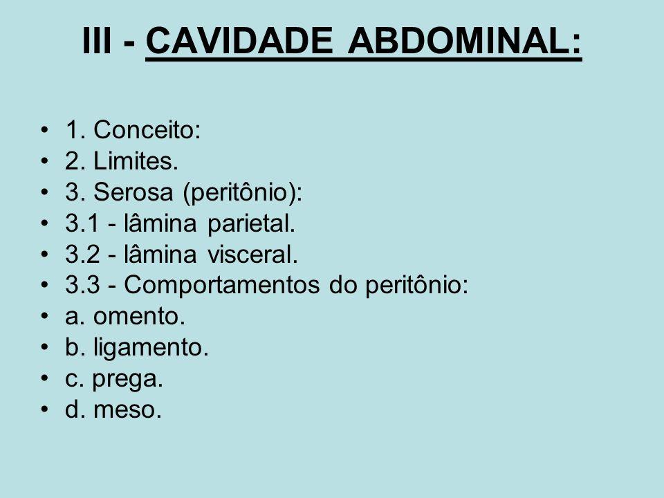 III - CAVIDADE ABDOMINAL: