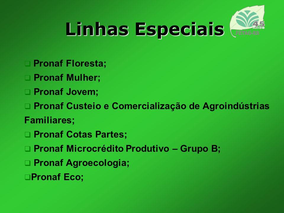 Linhas Especiais Pronaf Floresta; Pronaf Mulher; Pronaf Jovem;