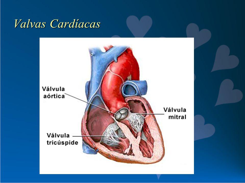 Valvas Cardíacas
