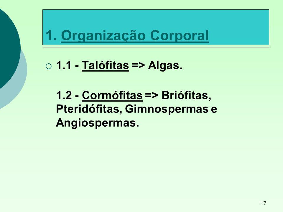 1. Organização Corporal 1.1 - Talófitas => Algas.