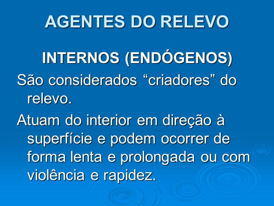 AGENTES DO RELEVO INTERNOS (ENDÓGENOS)