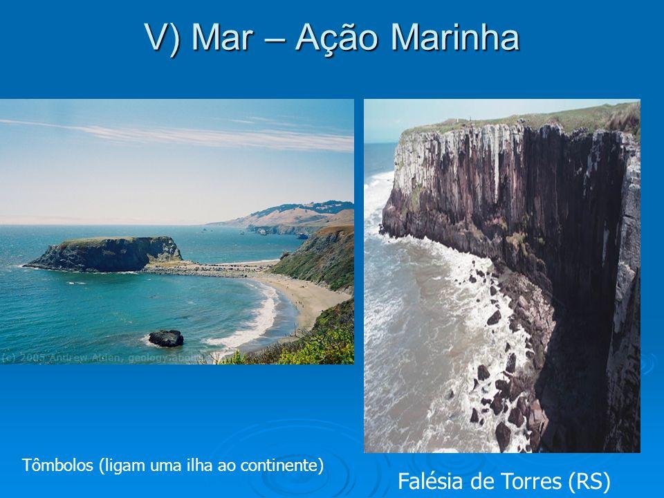 V) Mar – Ação Marinha Falésia de Torres (RS)