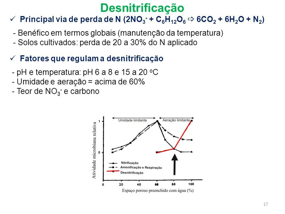 Desnitrificação Principal via de perda de N (2NO3- + C6H12O6  6CO2 + 6H2O + N2) Benéfico em termos globais (manutenção da temperatura)