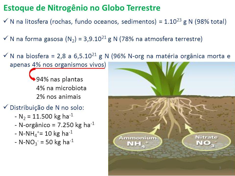 Estoque de Nitrogênio no Globo Terrestre