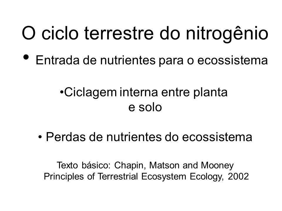 Entrada de nutrientes para o ecossistema