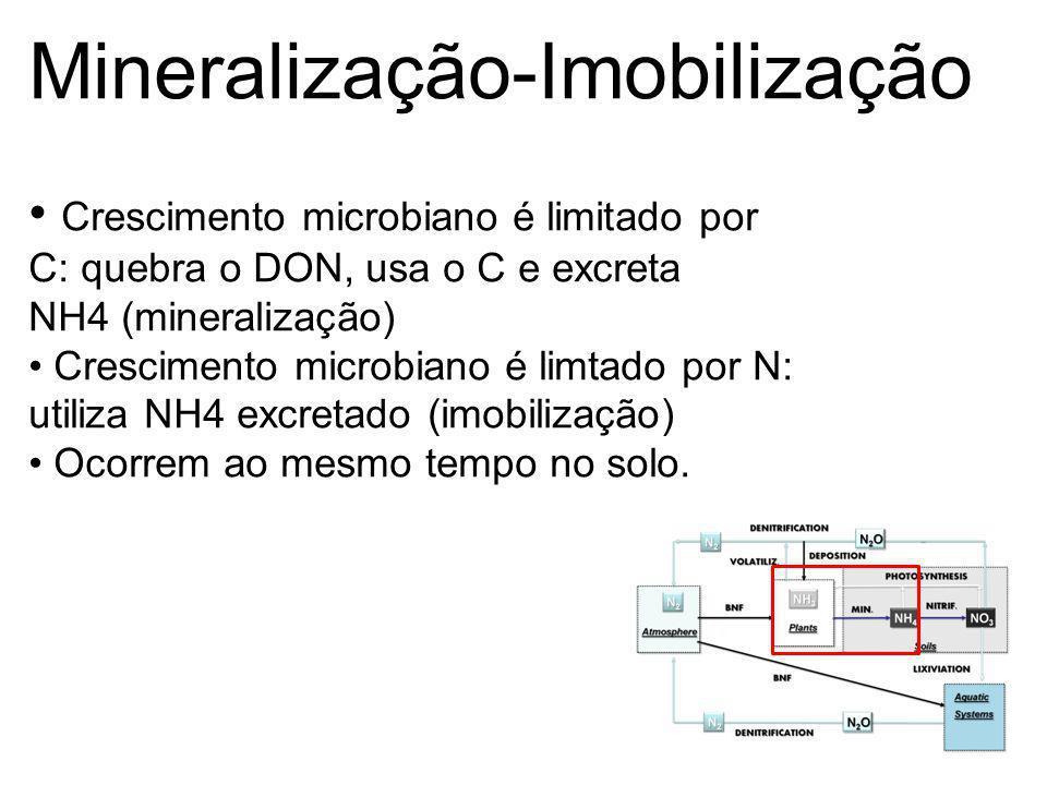 Mineralização-Imobilização