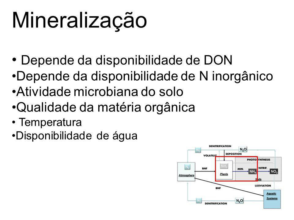 Mineralização Depende da disponibilidade de DON