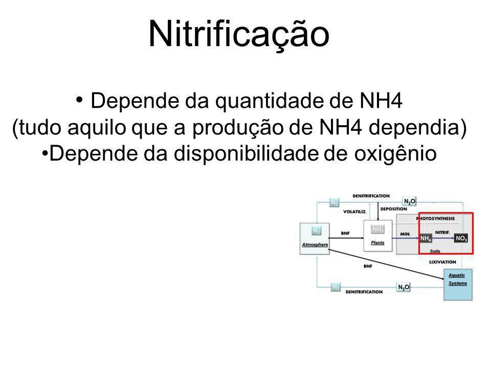 Nitrificação Depende da quantidade de NH4