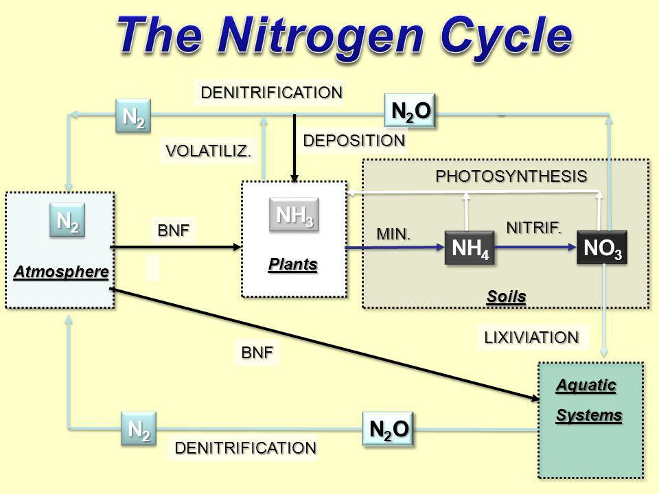 The Nitrogen Cycle NH3 NH4 NO3 N2 N2O DEPOSITION VOLATILIZ.