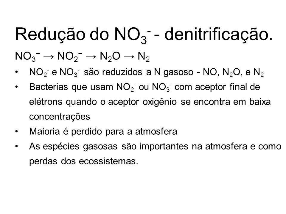 Redução do NO3- - denitrificação.