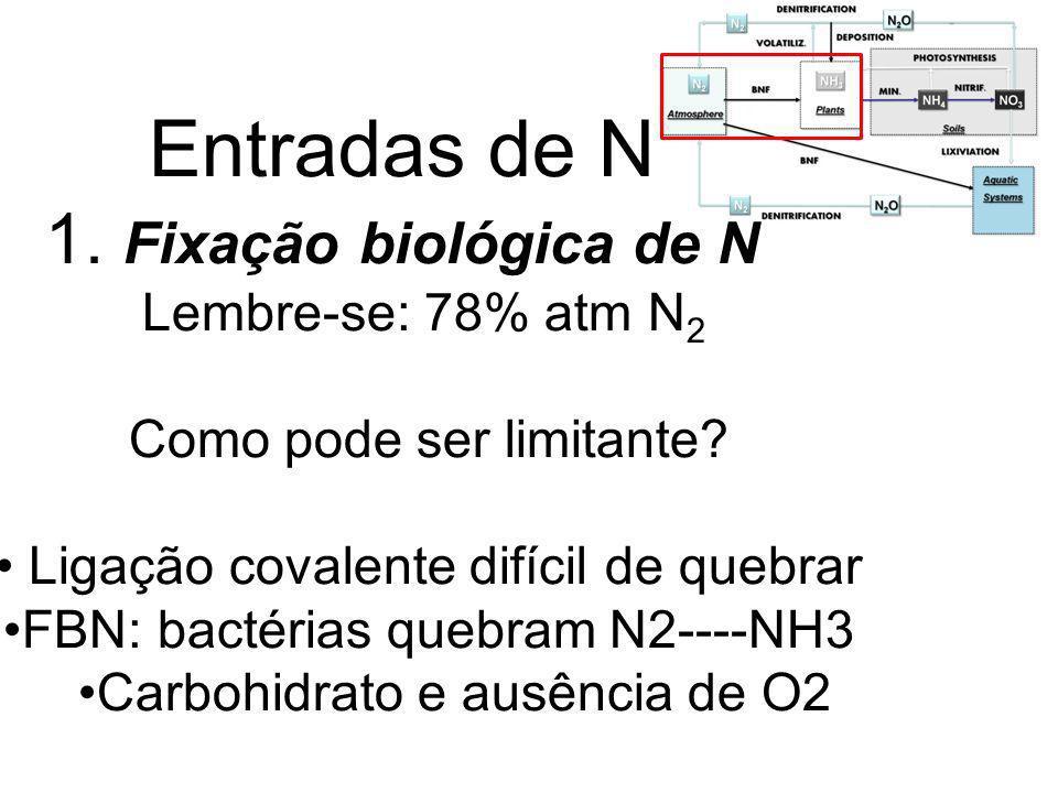 Entradas de N 1. Fixação biológica de N Lembre-se: 78% atm N2