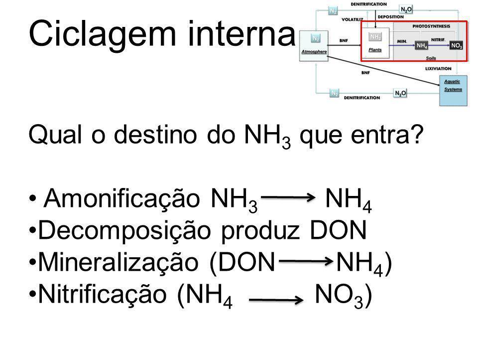 Ciclagem interna Qual o destino do NH3 que entra Amonificação NH3 NH4