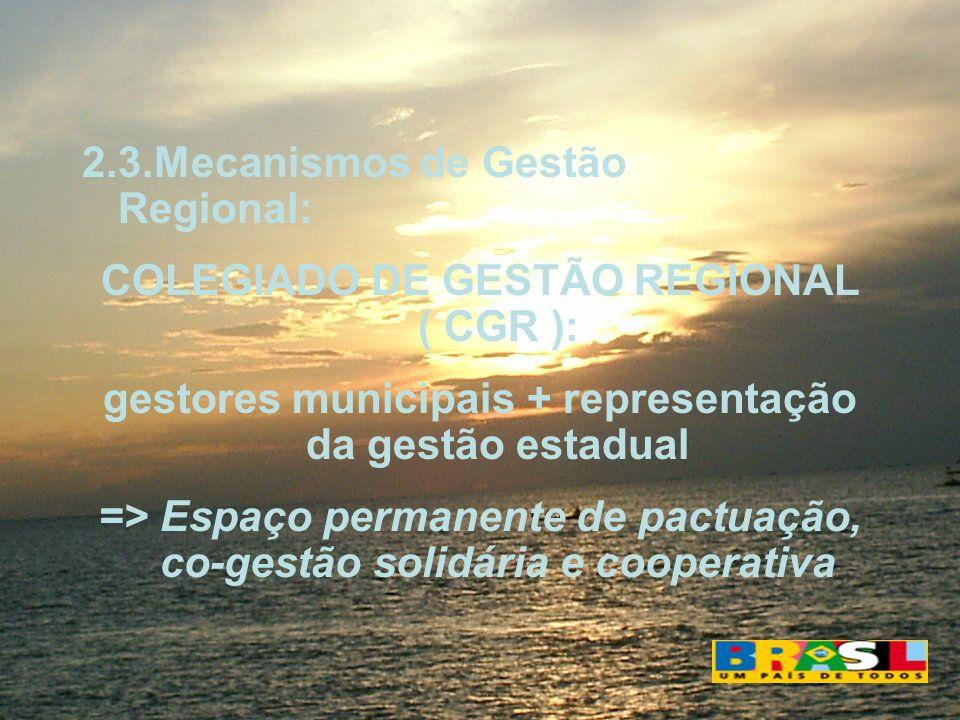 2.3.Mecanismos de Gestão Regional: