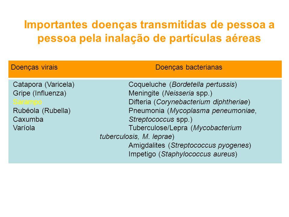 Importantes doenças transmitidas de pessoa a pessoa pela inalação de partículas aéreas