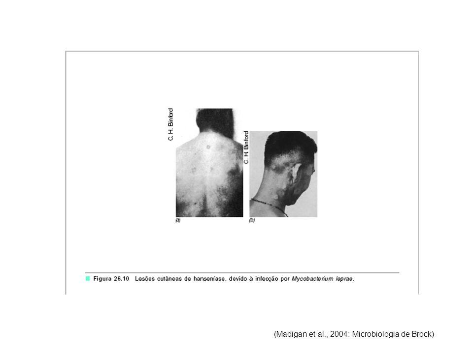 (Madigan et al., 2004: Microbiologia de Brock)