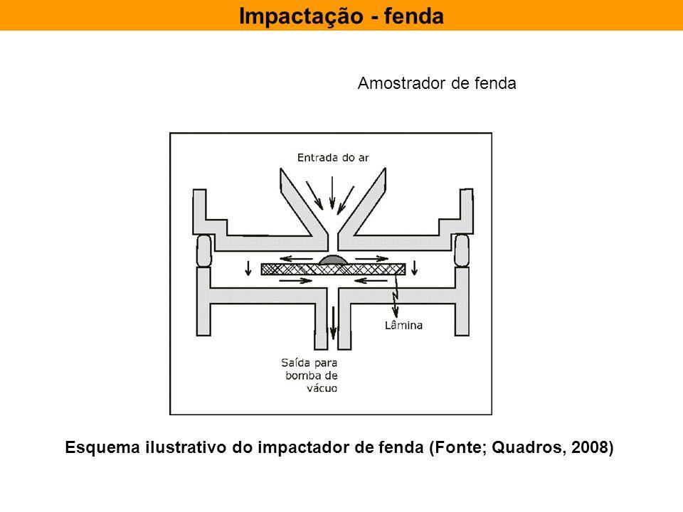 Esquema ilustrativo do impactador de fenda (Fonte; Quadros, 2008)
