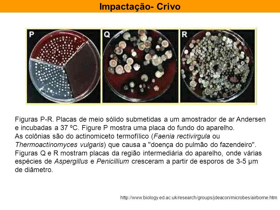 Impactação- CrivoFiguras P-R. Placas de meio sólido submetidas a um amostrador de ar Andersen.