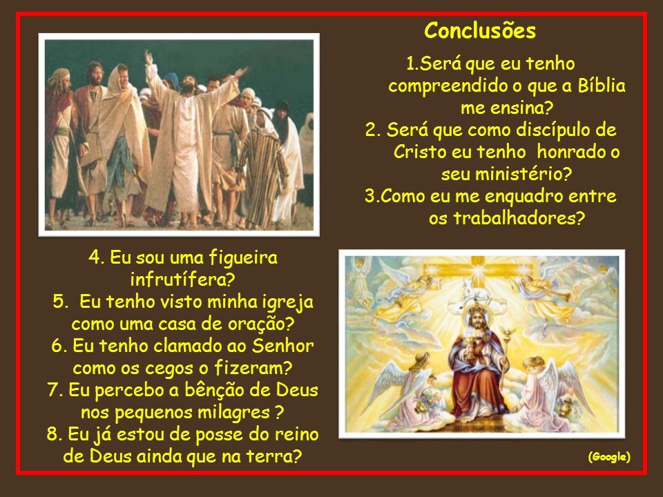 Conclusões (Google) 1.Será que eu tenho compreendido o que a Bíblia me ensina