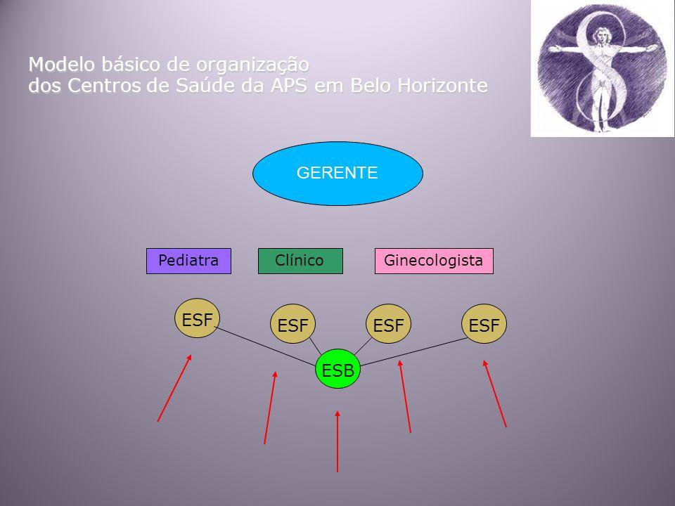 Modelo básico de organização