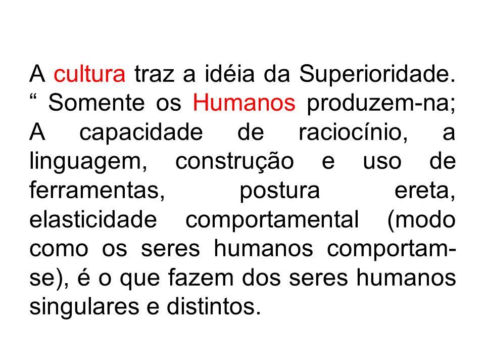 A cultura traz a idéia da Superioridade