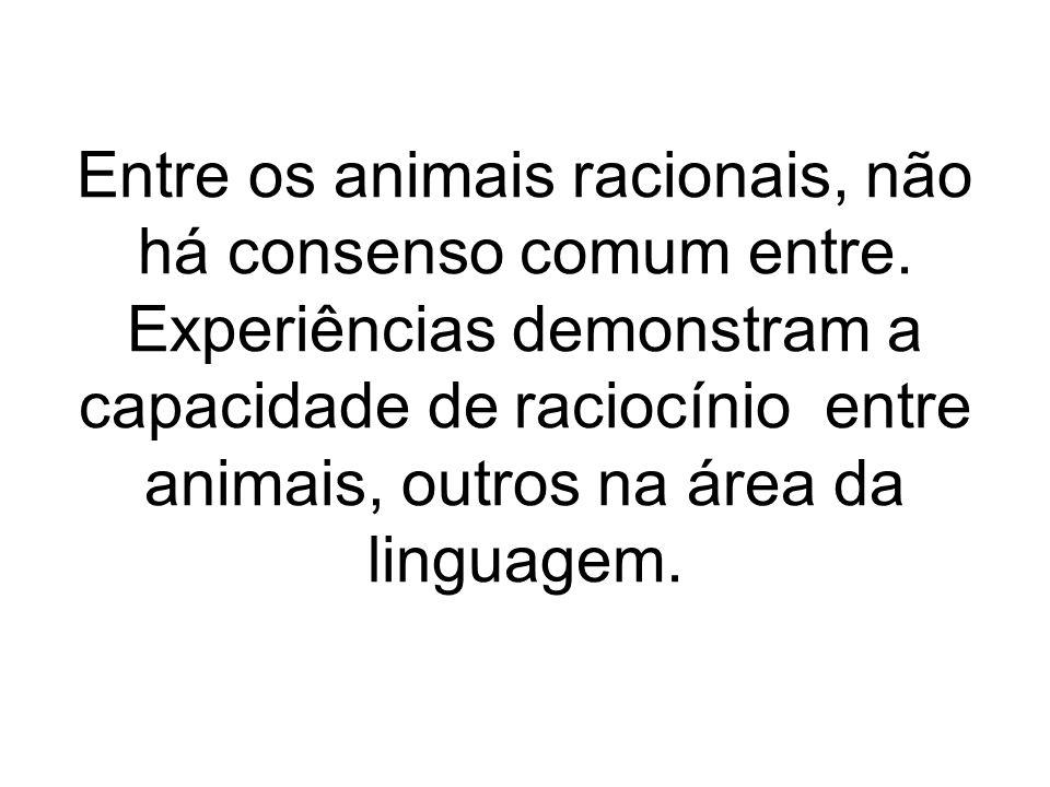 Entre os animais racionais, não há consenso comum entre