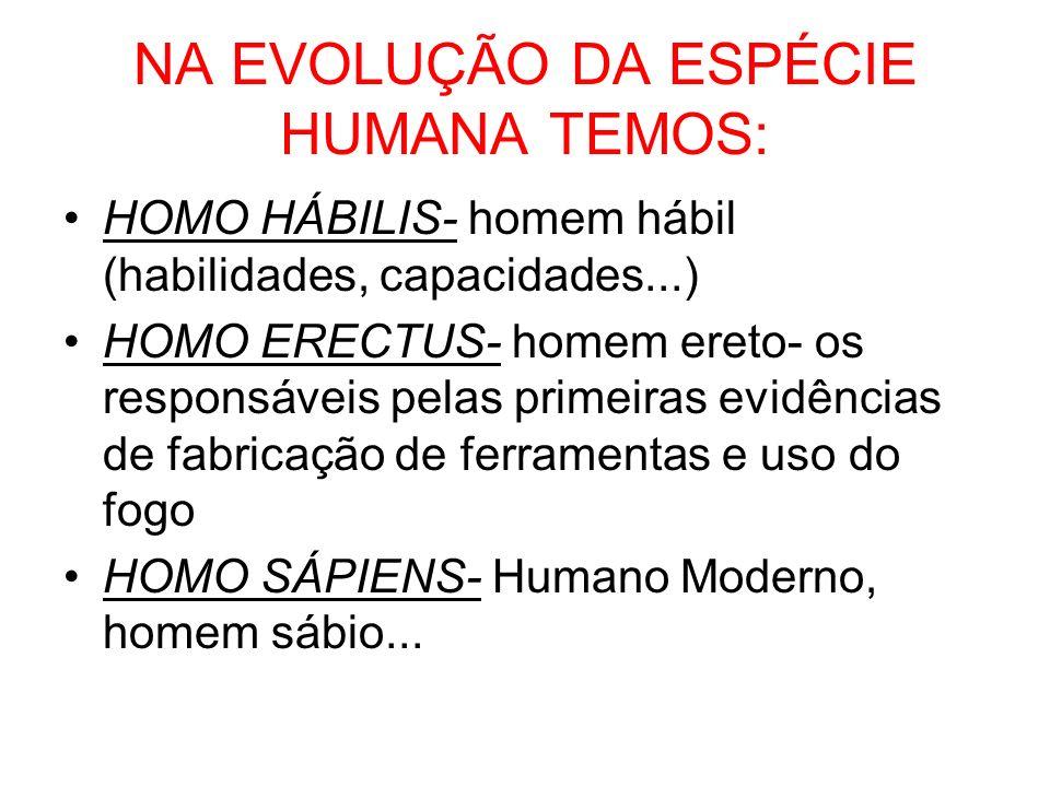 NA EVOLUÇÃO DA ESPÉCIE HUMANA TEMOS: