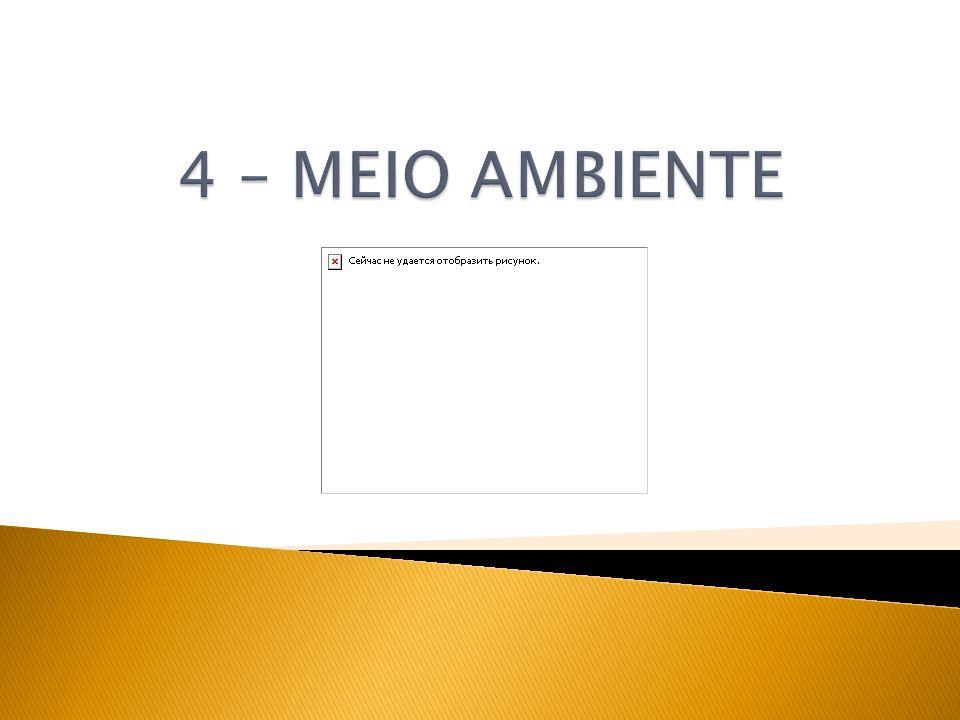 4 – MEIO AMBIENTE