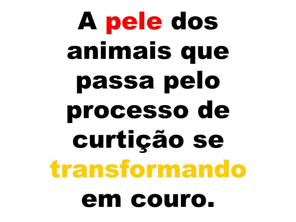 A pele dos animais que passa pelo processo de curtição se transformando em couro.
