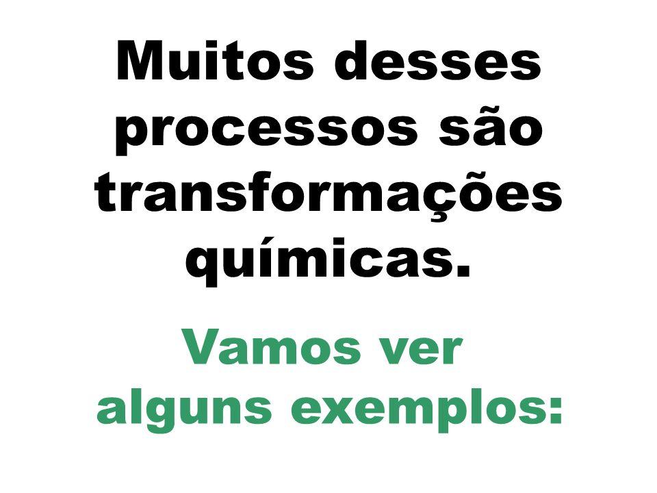 Muitos desses processos são transformações químicas.