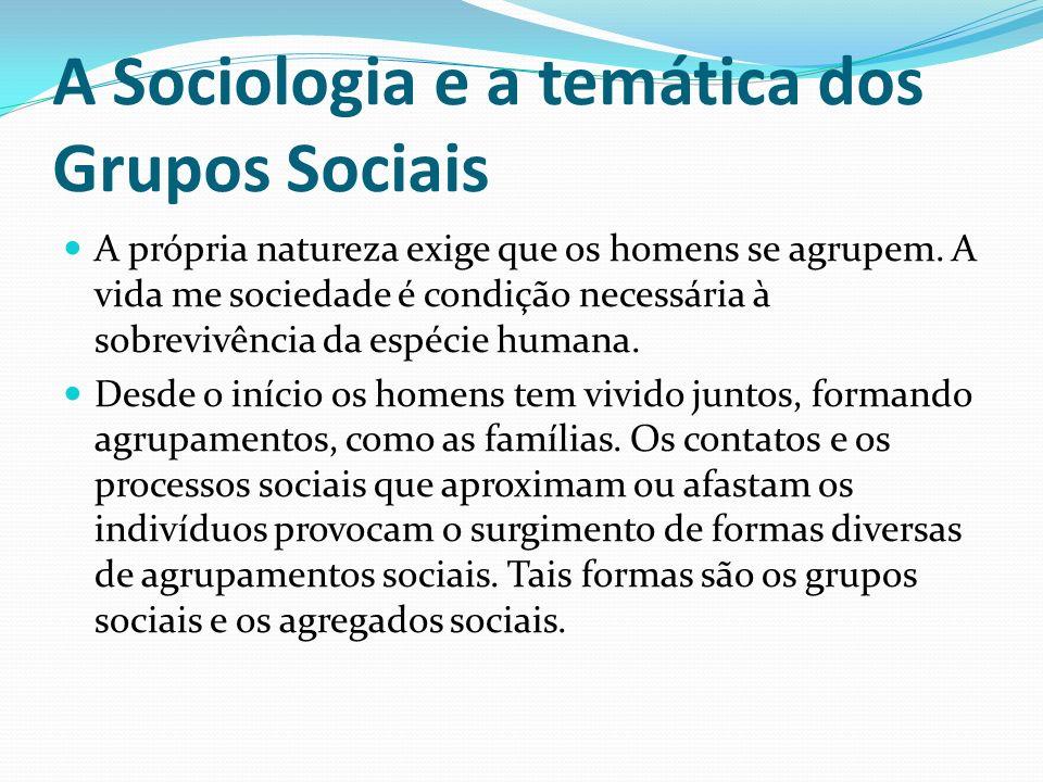 A Sociologia e a temática dos Grupos Sociais