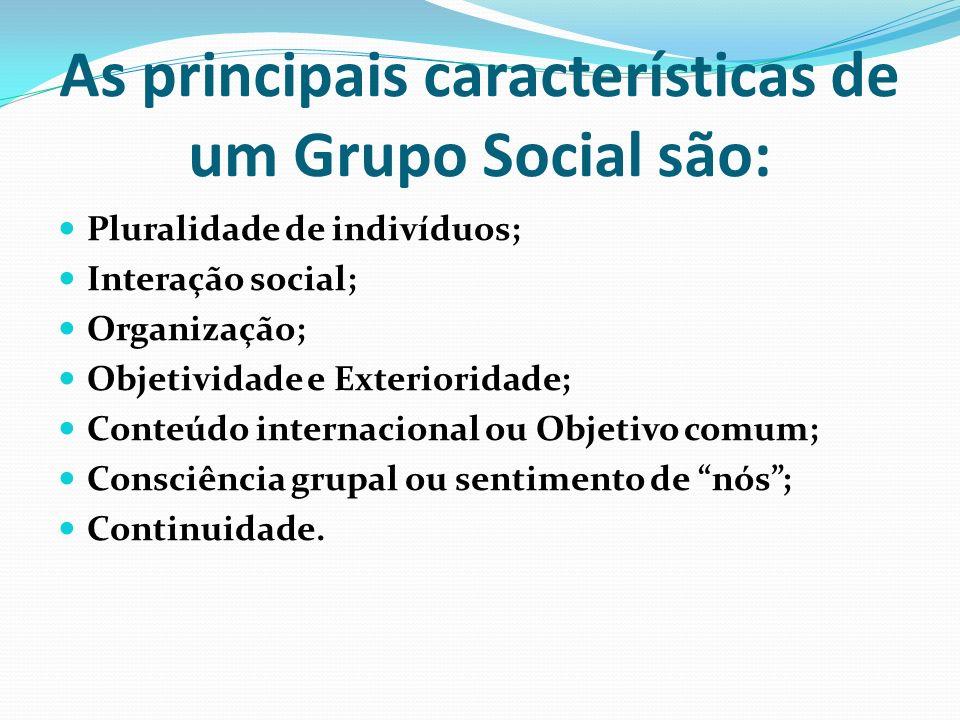 As principais características de um Grupo Social são: