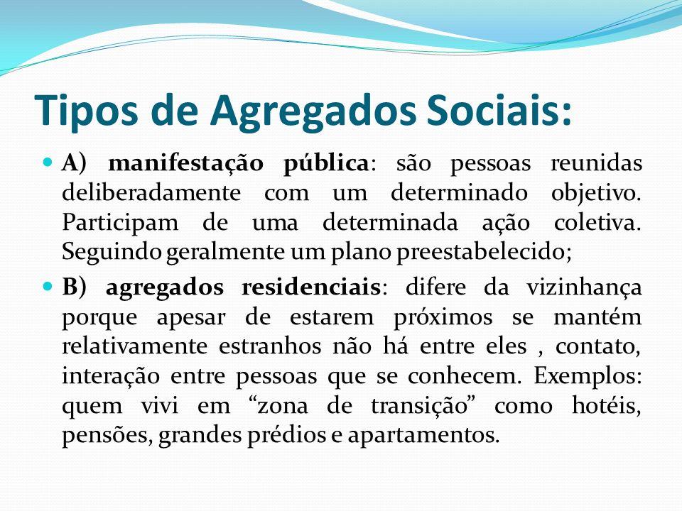 Tipos de Agregados Sociais: