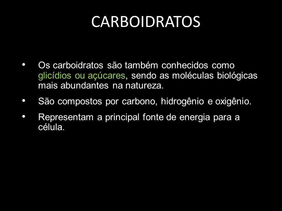 CARBOIDRATOS Os carboidratos são também conhecidos como glicídios ou açúcares, sendo as moléculas biológicas mais abundantes na natureza.