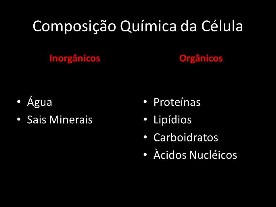 Composição Química da Célula