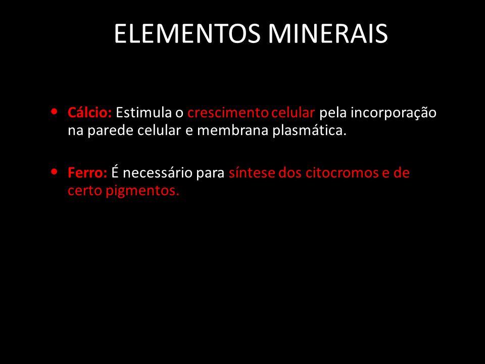 ELEMENTOS MINERAIS Cálcio: Estimula o crescimento celular pela incorporação na parede celular e membrana plasmática.
