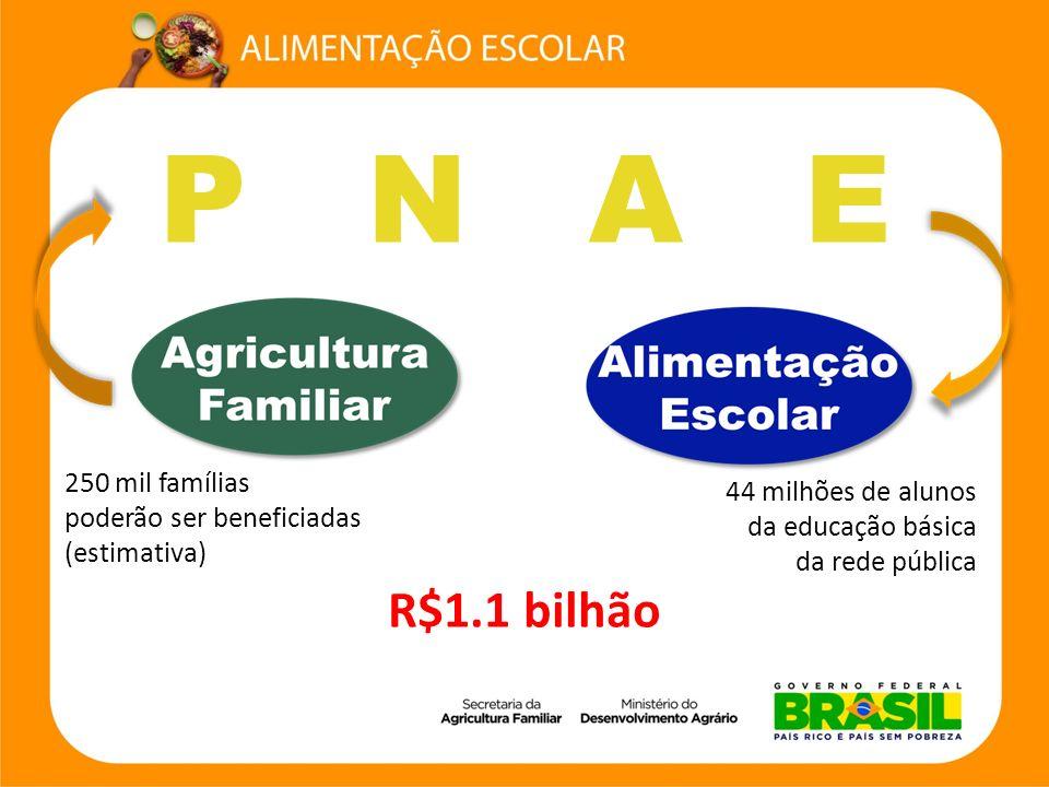 P N A E R$1.1 bilhão 250 mil famílias 44 milhões de alunos
